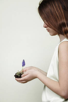 Fragile Spring Poster by Joana Kruse
