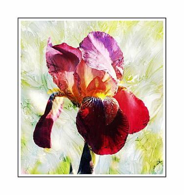 Framed Iris Poster