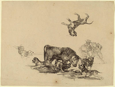 Francisco De Goya, Bull Attacked By Dogs Poster by Quint Lox