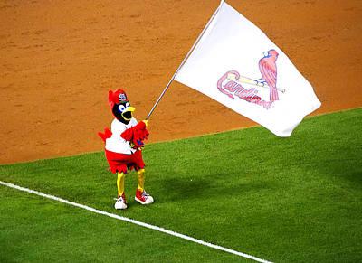 Fredbird Celebrates A Win Poster