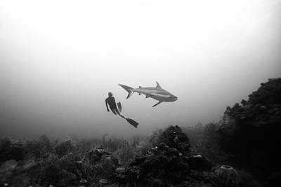 Cara A Cara Poster by One ocean One breath