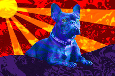 French Bulldog Poster by Sean Corcoran