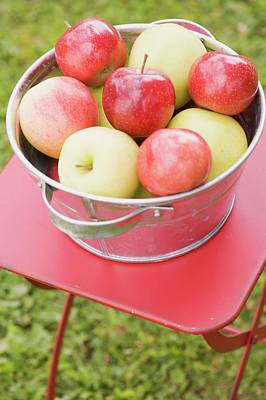 Fresh Apples In A Metal Bowl On A Garden Table Poster