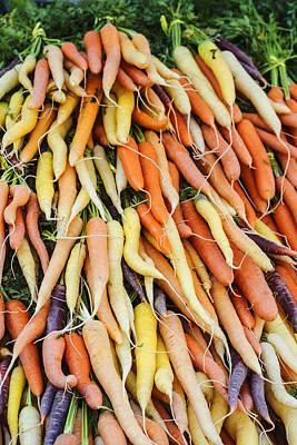 Fresh Carrots Background Poster