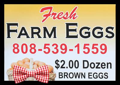 Fresh Farm Eggs Poster by Sylvia Thornton