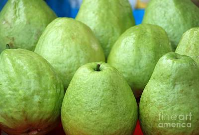 Fresh Green Guavas Poster by Yali Shi