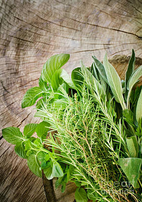 Fresh Herbs Poster by Mythja  Photography
