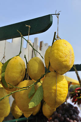 Fresh Lemons At The Market Poster by Matthias Hauser