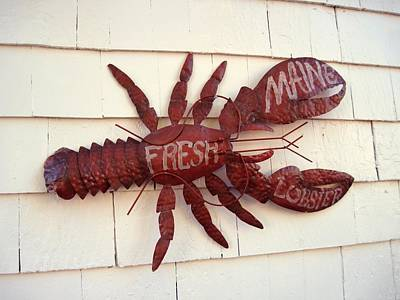 Fresh Maine Lobster Sign Boothbay Harbor Maine Poster