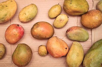 Fresh Mangos Poster by Tom Gowanlock