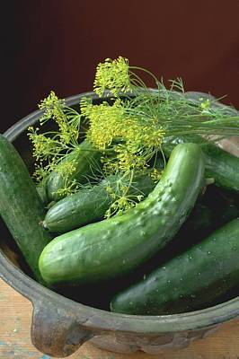 Fresh Pickling Cucumbers With Dill Poster