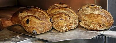 Freshly Baked Bread Poster by Oren Shalev