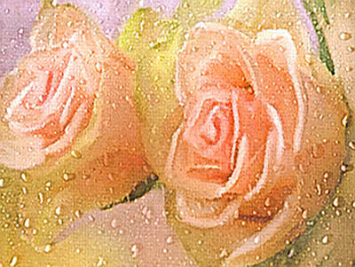 Freshly Watered Roses Poster