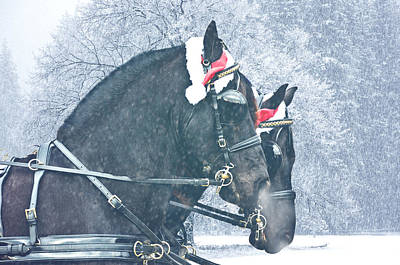 Friesian Holiday Poster
