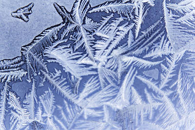 Frost In Blue Poster
