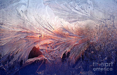 Frost On A Windowpane At Sunrise Poster