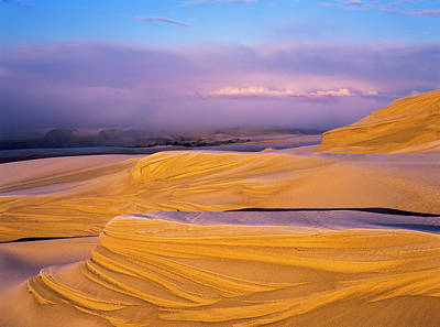Frost On The Umpqua Dunes  Lakeside Poster by Robert L. Potts