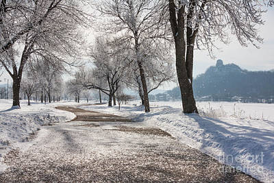 Poster featuring the photograph Frosty Stroll With Sugarloaf by Kari Yearous
