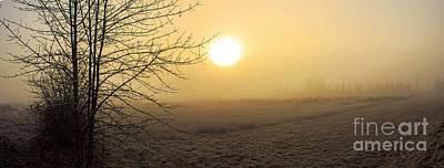 Frosty Sunrise Poster