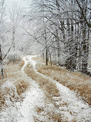 Poster featuring the photograph Frosty Trail by Penny Meyers