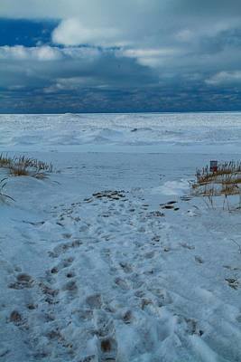 Frozen Beach On Lake Michigan Poster