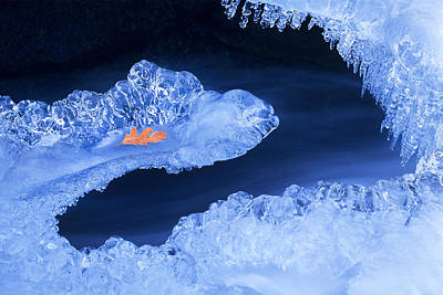 Frozen Beauty Aka Ice Is Nice Poster