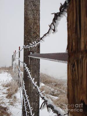 Frozen Fence Line Poster by J L Zarek