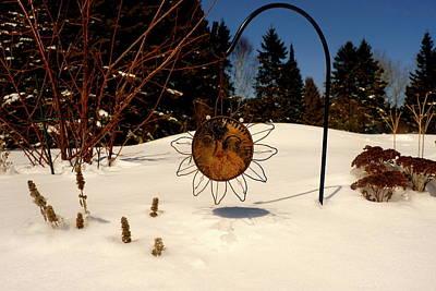 Frozen Garden Poster by Danielle  Broussard