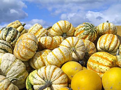 Frucht, Fruechte, Herbst, Kuerbis Poster