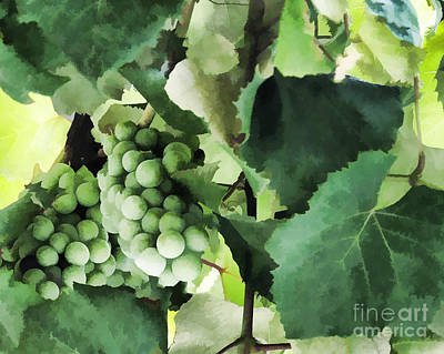 Fruit - Fruit Of The Vine - Luther Fine Art Poster by Luther Fine Art