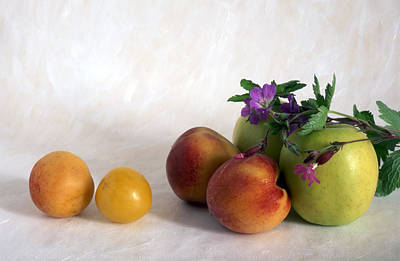 Fruits On Painted Background Poster by IB Photo