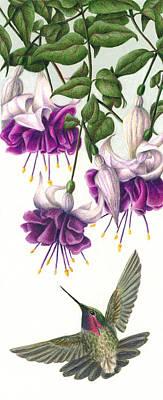 Fuchsia Beauty Poster by Pat Erickson