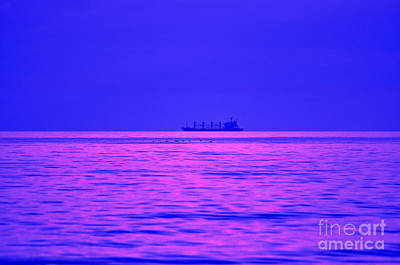 Fuchsia Flock And Freighter Poster by Al Powell Photography USA