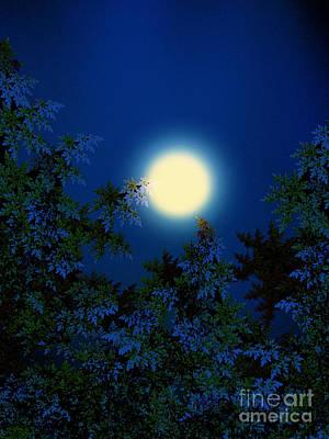 Full Moon Poster by Klara Acel