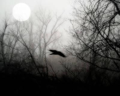 Full Moon Light Poster