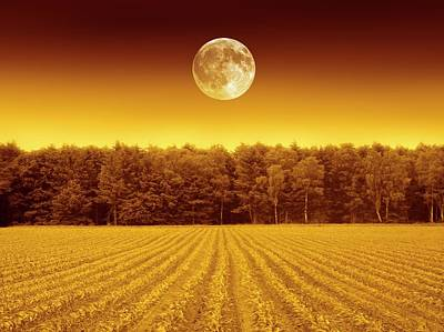 Full Moon Over A Field Poster by Detlev Van Ravenswaay