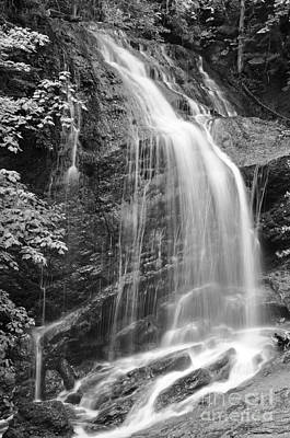 Fuller Falls Waterfall Black And White Poster