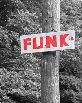 Poster featuring the photograph Funk Road by Brooke T Ryan