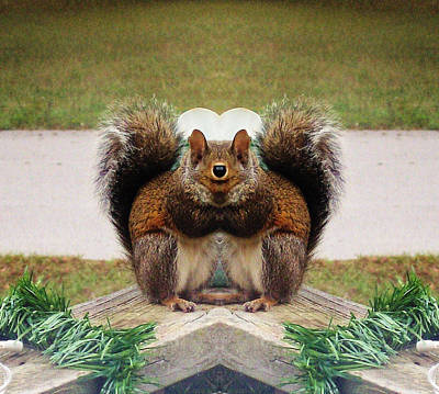 Funky Squirrel Eating Poster by Belinda Lee
