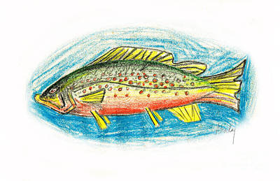 Funky Trout Poster