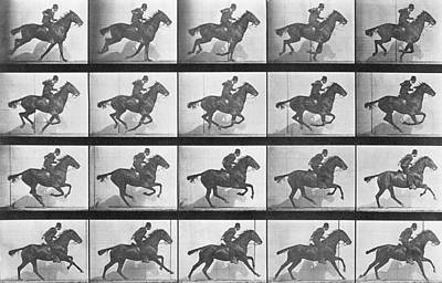 Galloping Horse Poster by Eadweard Muybridge