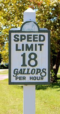 Gallops Per Hour Poster by Cynthia Guinn