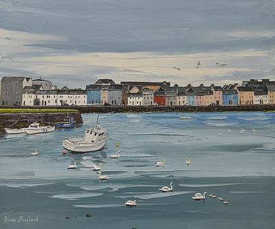 Galway Swans Galway Ireland Poster