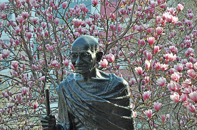 Union Square Gandhi With Magnolias Poster by Diane Lent