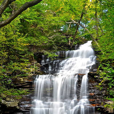 Ganoga Falls Ricketts Glen Poster