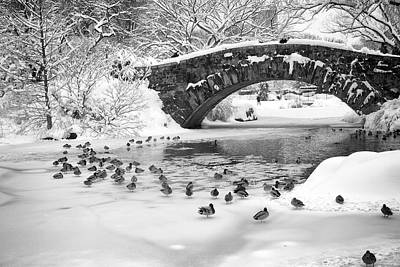 Poster featuring the photograph Gapstow Bridge In Snow by Dave Beckerman