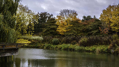 Garden Autumn Colors Poster by Julie Palencia