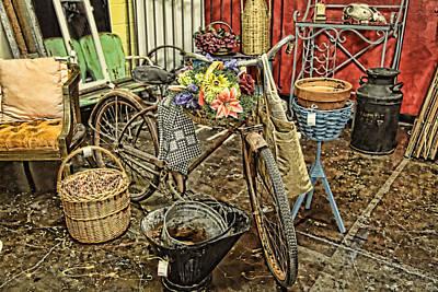Garden Bike Poster by Toni Hopper