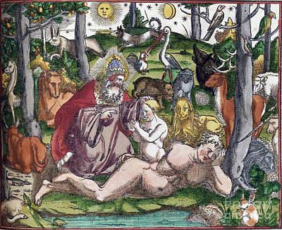 Garden Of Eden Historiae Animalium Poster by Science Source