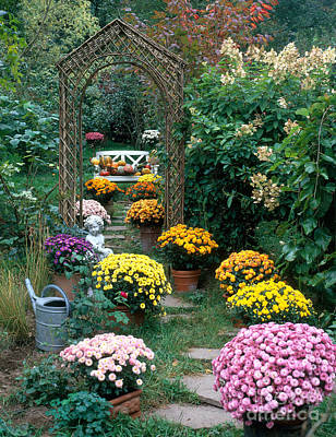 Garden Path With Potted Plants Poster by Hans Reinhard